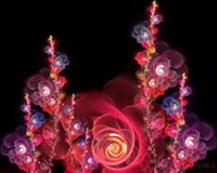 flower21